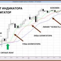 Wskaźnik aligatora: Jak korzystać z handlu forex